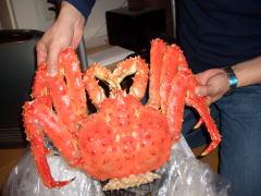 ボイルカニ(蟹)の写真