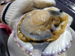ホタテの解体の仕方:貝からさらに切り離す